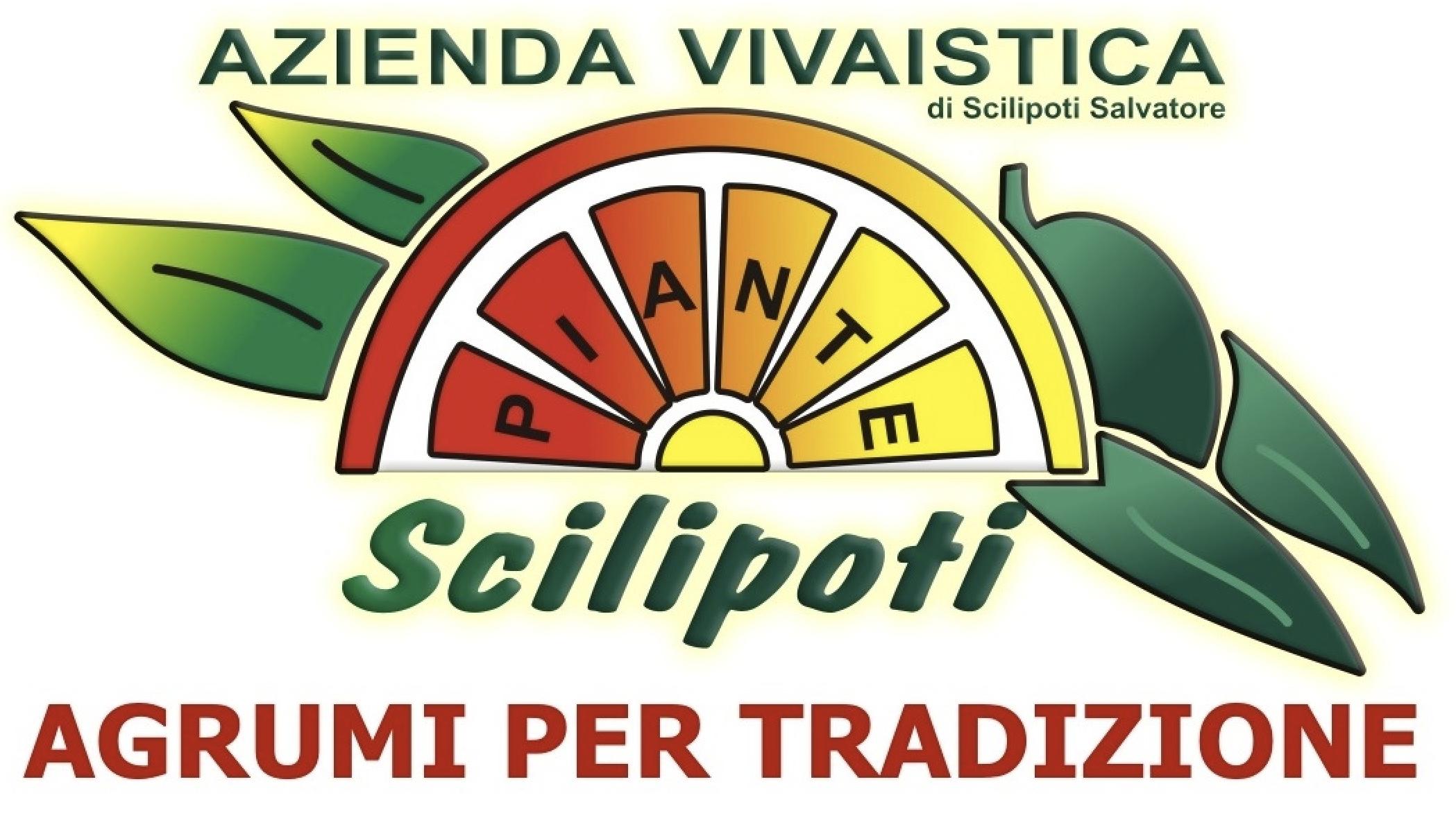 piantescilipoti.com